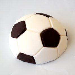 כדורגל לבן שחור