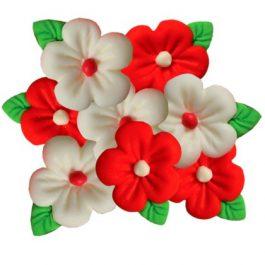 פרח אבקן קטן אדום לבן